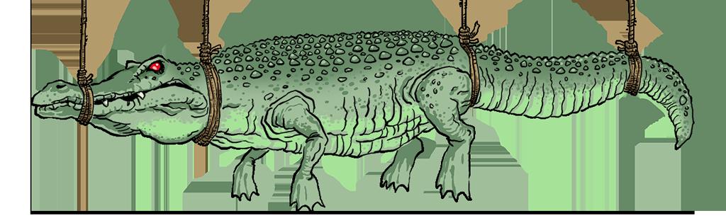 Bild på krokodil